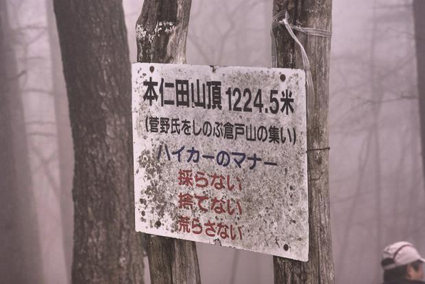IMGP3196.jpg